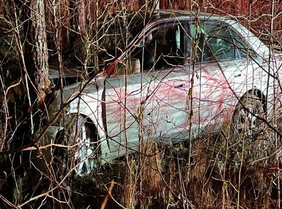 Car crashes into woods